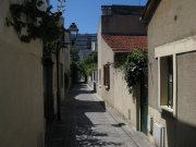 Peupliers passage bourgoin.jpg