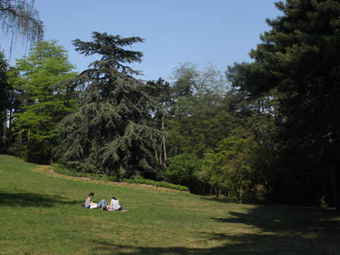 Montsouris parc montsouris 2.jpg