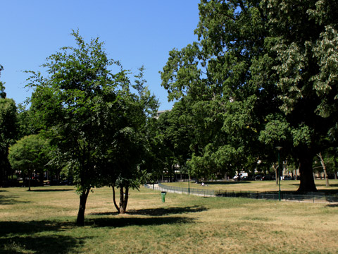 Bois de Boulogne jardin du ranelagh.jpg